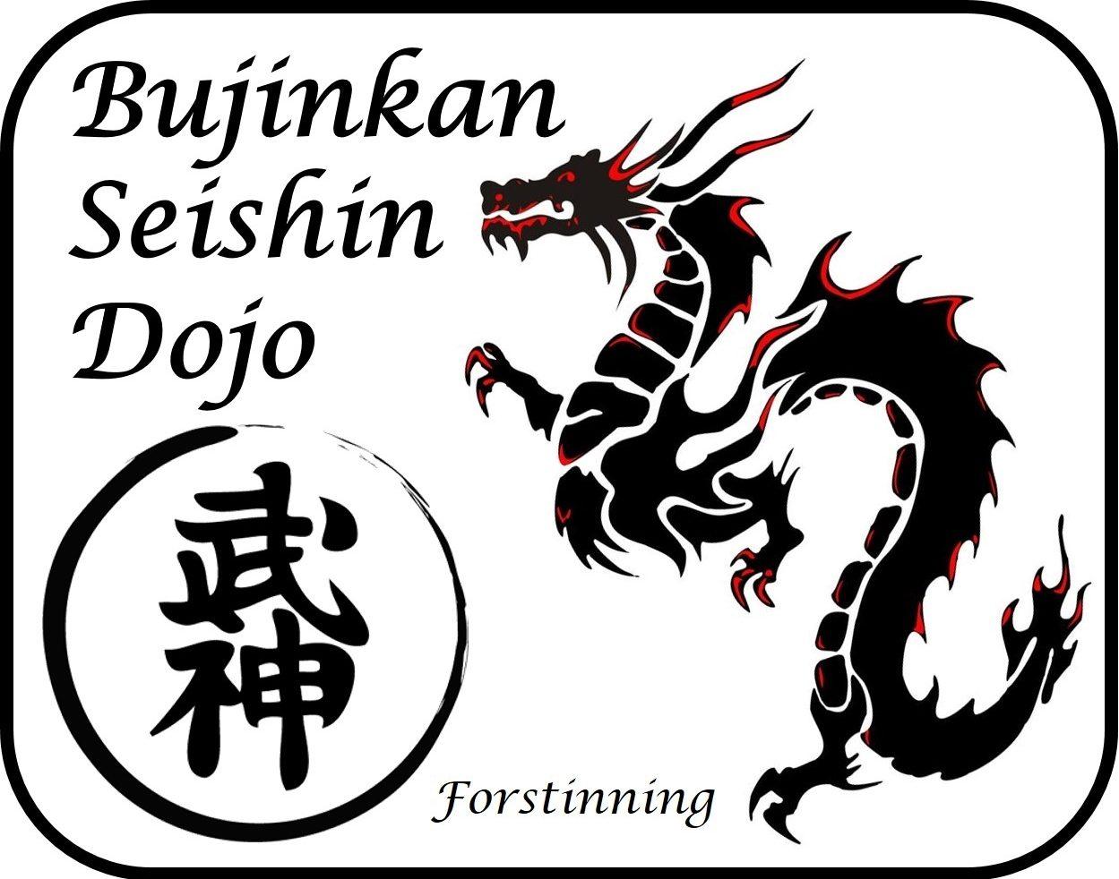 Bujinkan Seishin Dojo Forstinning
